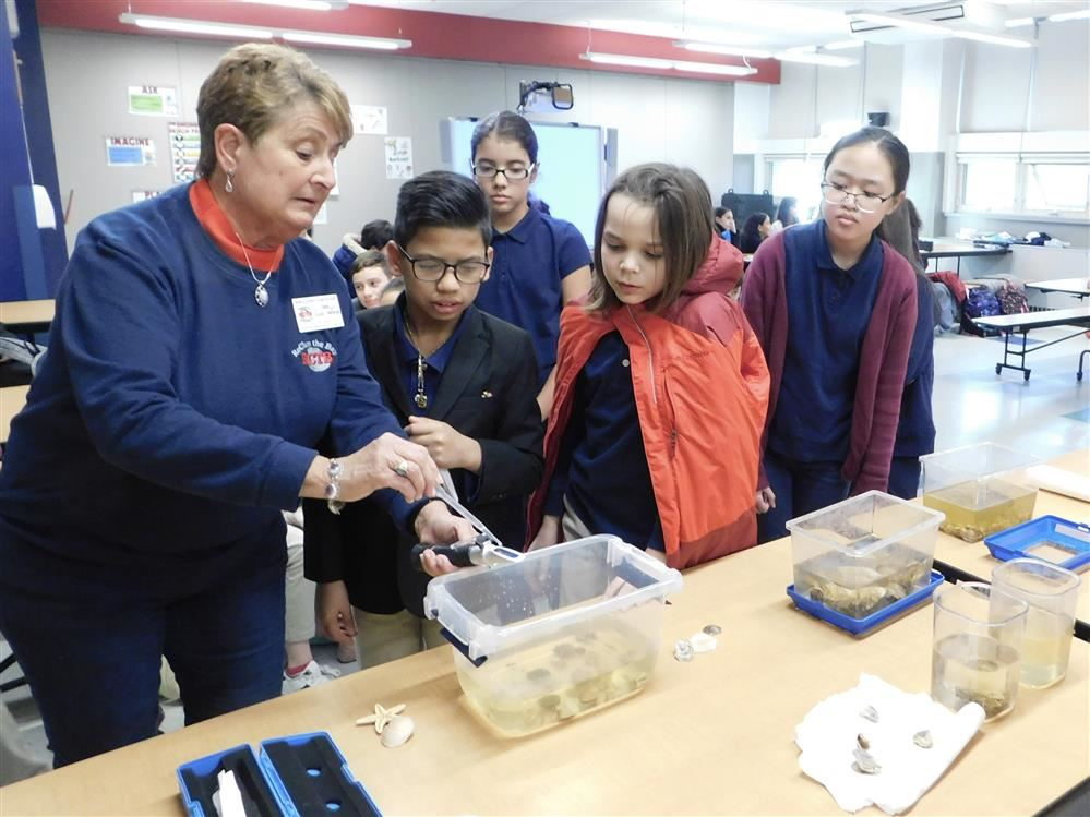 Students learn about efforts to keep bay water clean